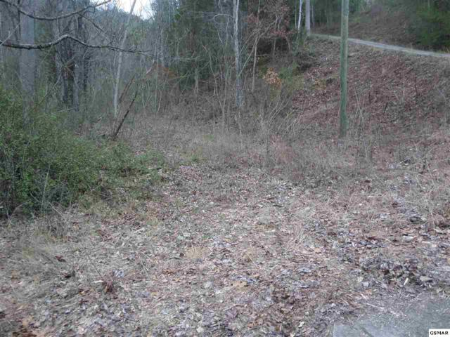 Lot #15 Arron Way Whispering Pine, Sevierville, TN 37876 (#207810) :: SMOKY's Real Estate LLC