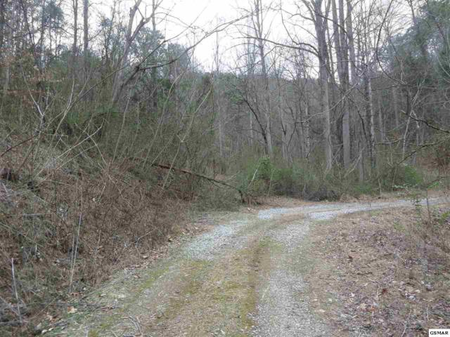 Lot #18 Arron Way Whispering Pine, Sevierville, TN 37876 (#207814) :: SMOKY's Real Estate LLC