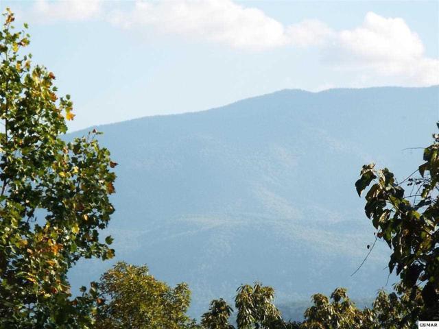 Lot 17 Pleasant Valley Little Bear Roa, Cosby, TN 37722 (#207906) :: Billy Houston Group