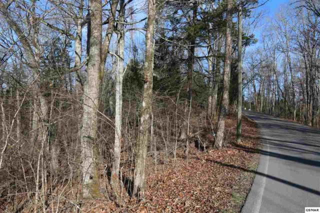 Lot 5 Red Bud Ln, Sevierville, TN 37876 (#207956) :: Billy Houston Group