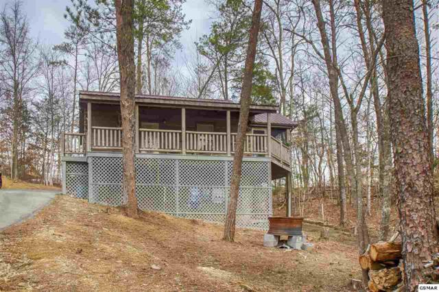 634 Magic Kingdom Ln, Sevierville, TN 37876 (#208053) :: Colonial Real Estate