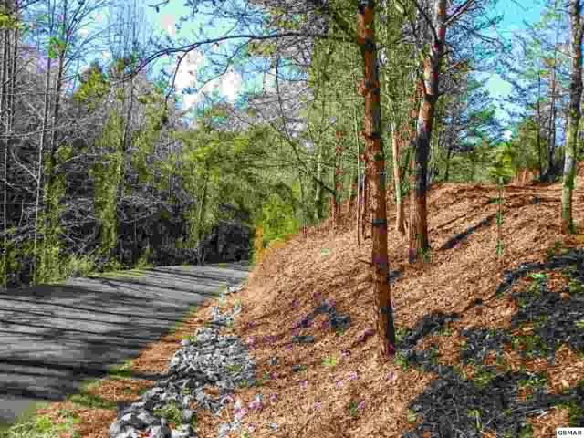 Lot# 1 Oldham Springs Way, Sevierville, TN 37862 (#208054) :: Billy Houston Group