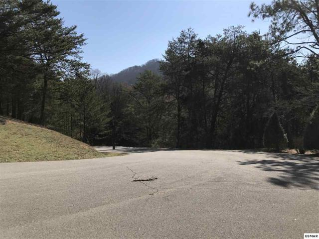 Lot 12 Steeple Way, Pigeon Forge, TN 37868 (#208061) :: Billy Houston Group