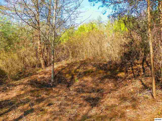 Lot# 2 Oldham Springs Way, Sevierville, TN 37862 (#208066) :: Billy Houston Group