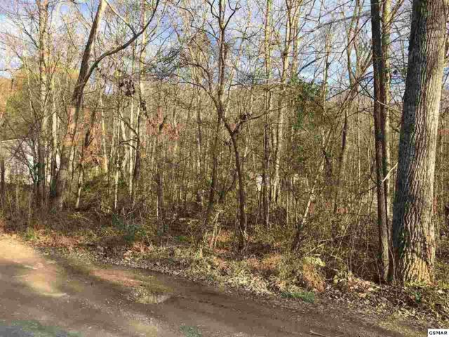 LOT 39 Black Oak Dr, Sevierville, TN 37876 (#208193) :: Billy Houston Group