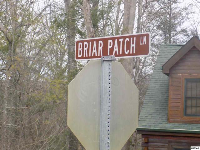 Lot 22 Briar Patch Lane Greenbriar Vill, Gatlinburg, TN 37738 (#208252) :: Billy Houston Group
