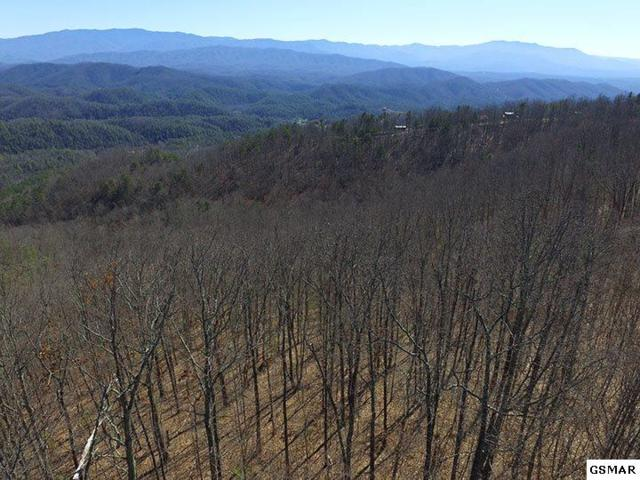 Lot 50 Shady Oaks Dr, Sevierville, TN 37876 (#208457) :: Billy Houston Group
