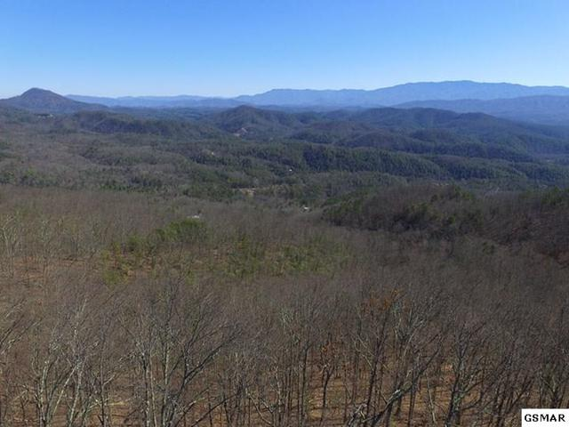 Lot PO49 #2 Shady Oaks Dr, Sevierville, TN 37876 (#208465) :: Billy Houston Group