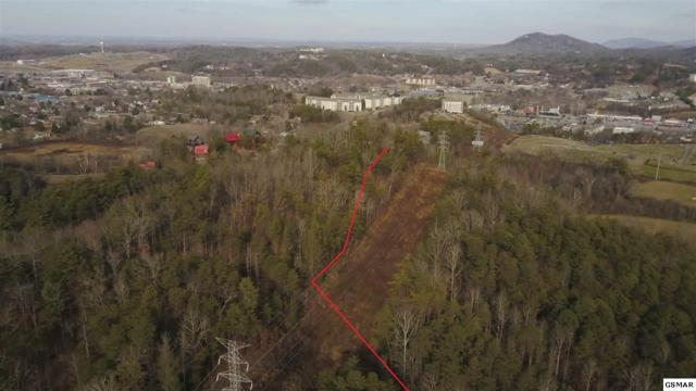 Lot 47 Tinker Hollow Rd., Pigeon Forge, TN 37863 (#208491) :: The Terrell Team