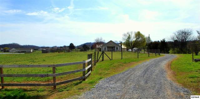 437 Coile Rd, Jefferson City, TN 37760 (#208680) :: Colonial Real Estate