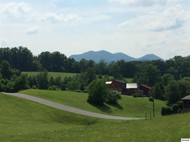 Lot 28 Sugar Tree Dr, Sevierville, TN 37862 (#208757) :: Billy Houston Group