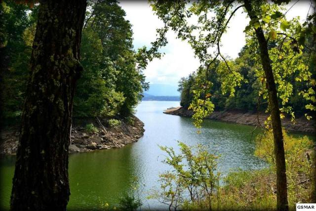 2.99 Acres Fortunato Dr Lake Front, Baneberry, TN  (#208936) :: Colonial Real Estate