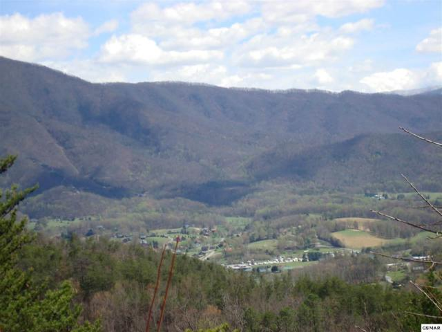 Lot #32 Lot # 32 Hatcher Mountai, Sevierville, TN 37862 (#209111) :: Billy Houston Group