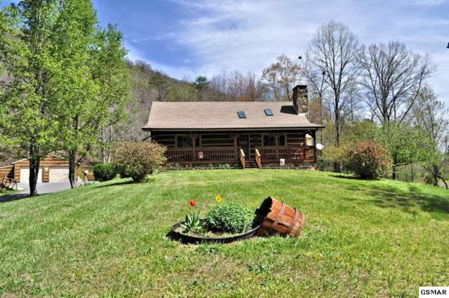 3779 Henry Town Road, Sevierville, TN 37876 (#209114) :: The Terrell Team