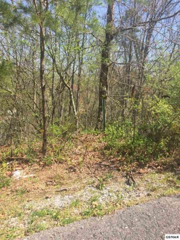 Lot 413 Silver Stone Way, Pigeon Forge, TN 37863 (#209142) :: Colonial Real Estate