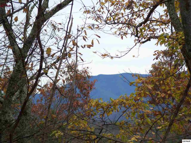 Lots 2,3,4 Scenic Trail Cobbly Nob, Gatlinburg, TN 37738 (#209213) :: The Terrell Team