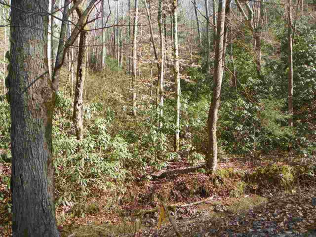 Lot 2 Sugar Maple Loop, Sevierville, TN 37862 (#209365) :: Colonial Real Estate