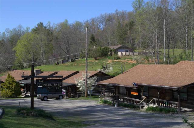 550 Buckhorn Rd., Gatlinburg, TN 37738 (#209366) :: The Terrell Team