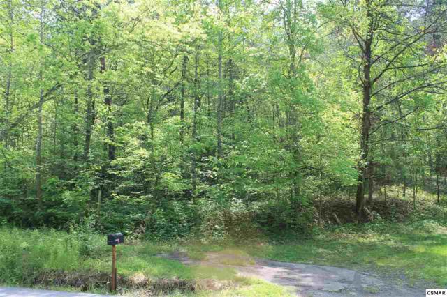 Lot 2R3 S Rogers Rd, Seymour, TN 37865 (#209461) :: Four Seasons Realty, Inc