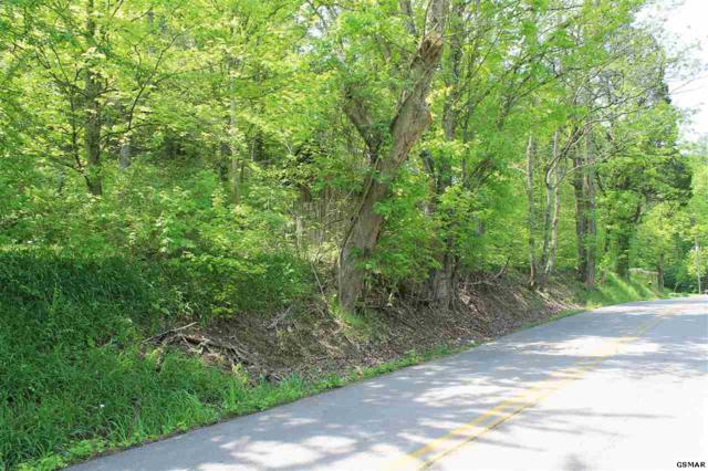 Lot 2R2 S Rogers Rd, Seymour, TN 37865 (#209462) :: Billy Houston Group