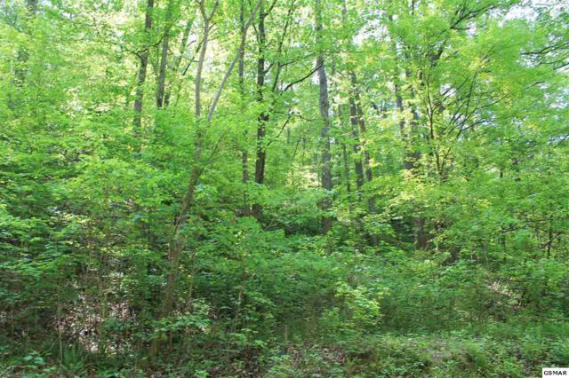 Lot Po2 S Rogers Rd, Seymour, TN 37865 (#209463) :: Billy Houston Group