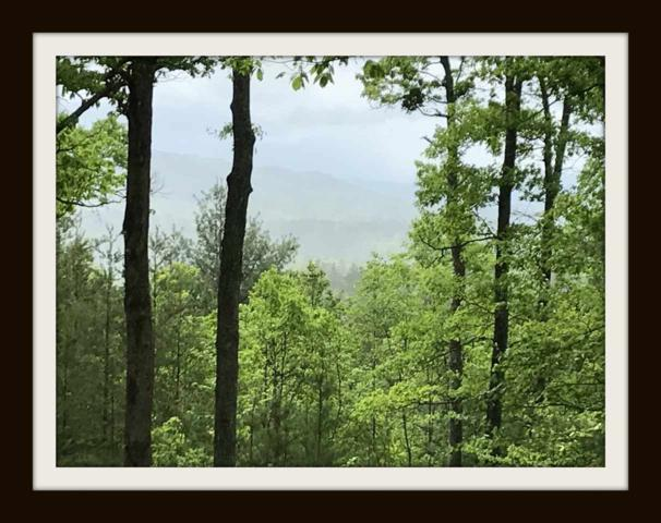 "Lot 11 Knoll Top Way ""Heavenly On Kn, Sevierville, TN  (#209491) :: Billy Houston Group"