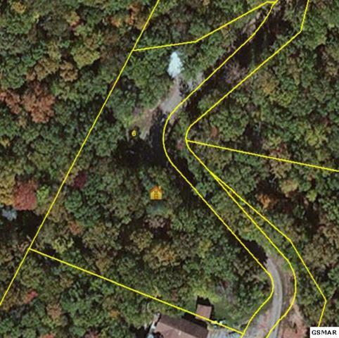 Lot 6 Backwoods Way, Gatlinburg, TN 37738 (#209541) :: The Terrell Team