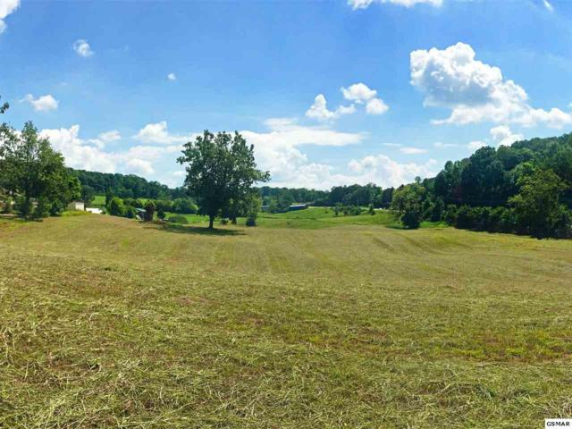 Lot 1 Hickory Hills Road, Jefferson City, TN 37760 (#209543) :: Billy Houston Group