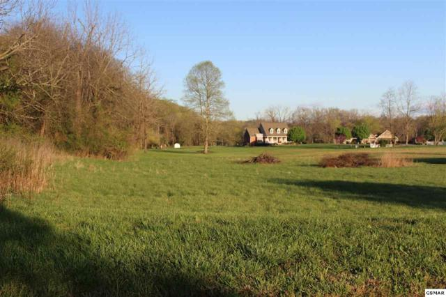 Lot 14 Broad River Lane, Sevierville, TN 37876 (#209651) :: Billy Houston Group