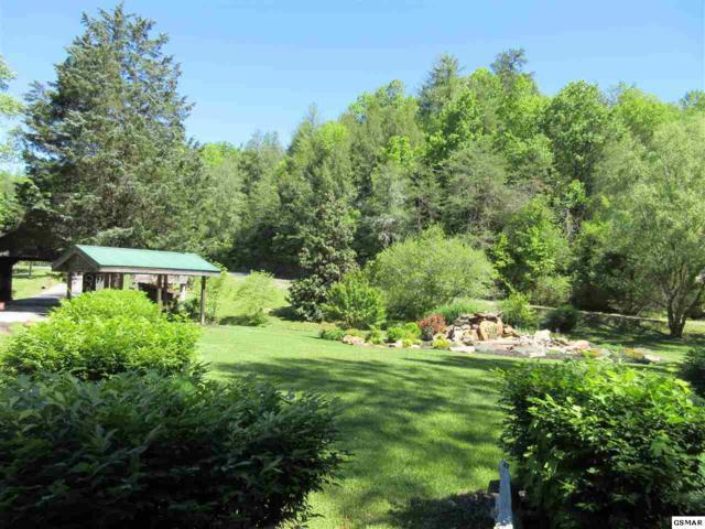 Lot 73 Cedar Falls Way, Sevierville, TN 37862 (#209727) :: Billy Houston Group