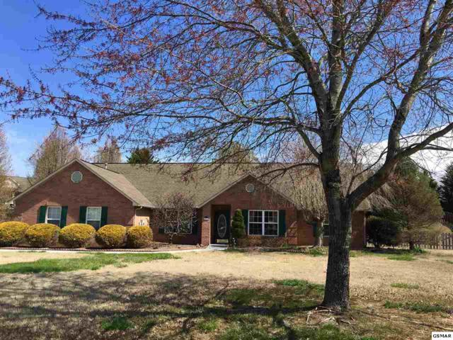 1930 Chelsea Jo Lane, Sevierville, TN 37876 (#209812) :: Colonial Real Estate