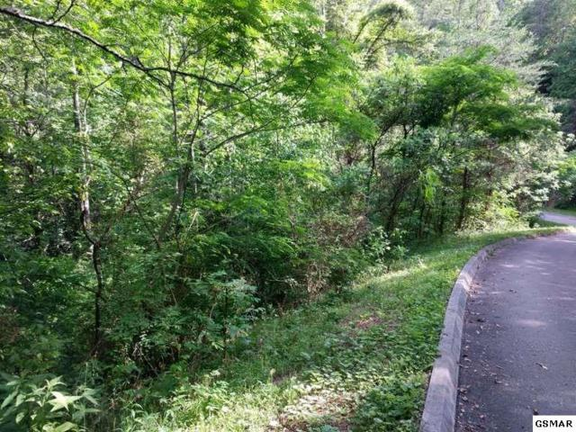Lot 25 Shady Grove Rd, Sevierville, TN 37876 (#209900) :: Billy Houston Group