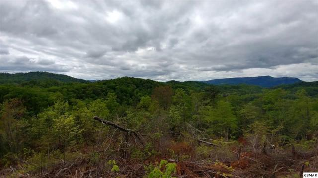 Lot 4 Phase 4 Lighting Strike Dr, Sevierville, TN 37862 (#209942) :: The Terrell Team