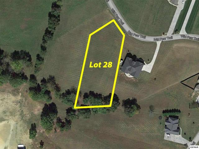 Lot 28 Wild Pear Trail, Dandridge, TN 37725 (#209965) :: The Terrell Team