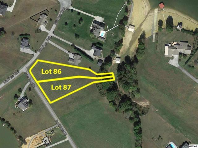 Lot 87 Duck Pond Drive, Dandridge, TN 37725 (#209967) :: Four Seasons Realty, Inc