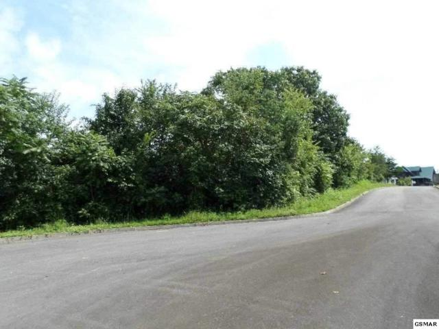 Lot 12 Pinnacle Drive, Dandridge, TN 37725 (#209971) :: Billy Houston Group