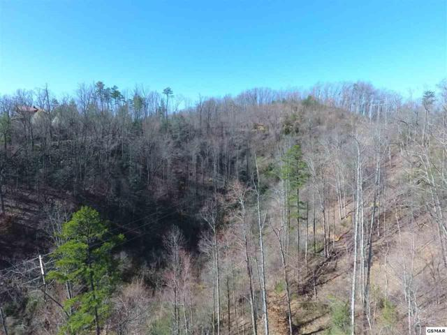 Running Running Bear Rd Parcel 110 003., Cosby, TN 37722 (#209981) :: Four Seasons Realty, Inc