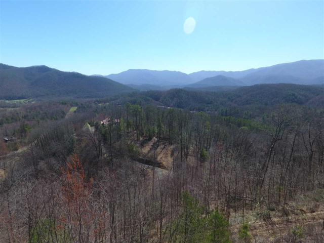 Running Running Bear Rd Lot 15 Parcel 1, Cosby, TN 37722 (#209985) :: Four Seasons Realty, Inc