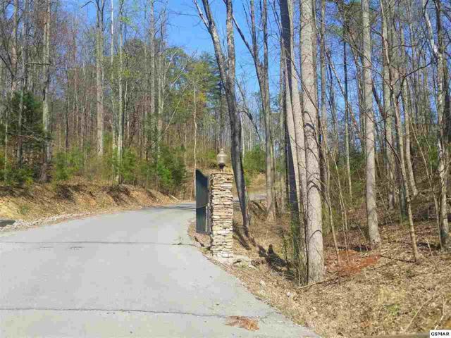 Lot 2R Lone Ridge, Sevierville, TN 37862 (#210039) :: Billy Houston Group