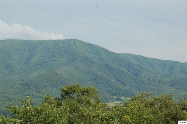 Lot 86 Hatcher Mtn Rd, Sevierville, TN 37862 (#210121) :: Four Seasons Realty, Inc