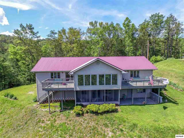 3206 Hickey Road, Sevierville, TN 37876 (#210136) :: The Terrell Team