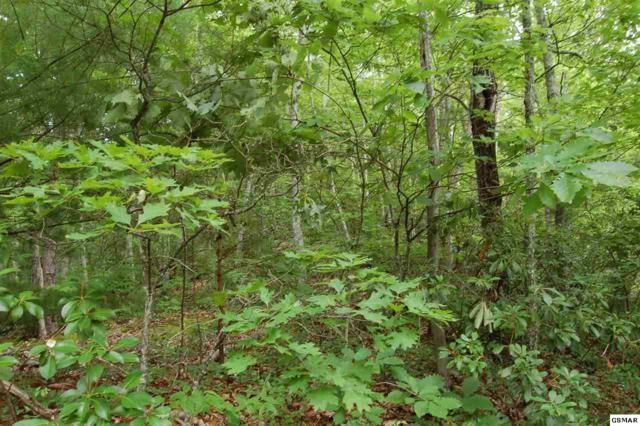 Lot 13Q Spurling Way, Sevierville, TN 37862 (#210143) :: Four Seasons Realty, Inc