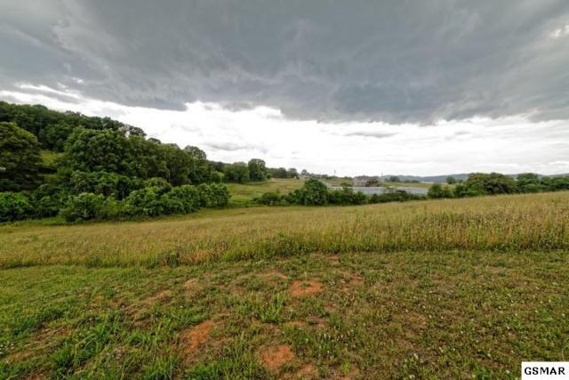 Lot 7,8,9, Waterway Drive, Rutledge, TN 37861 (#210164) :: Billy Houston Group