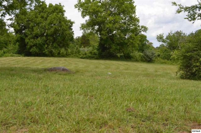 Lot 88 Mississippi, Seymour, TN 37865 (#210250) :: Billy Houston Group