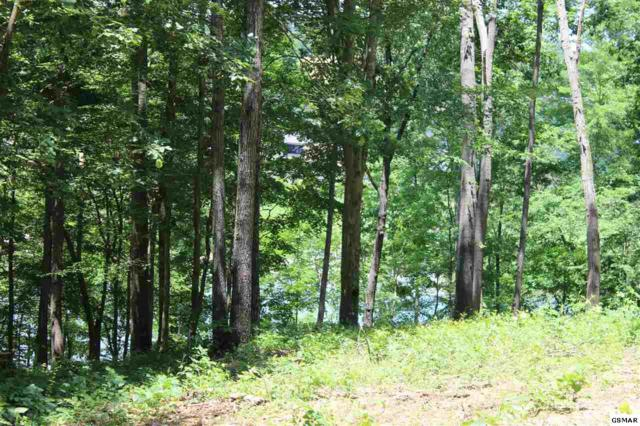 Lot 9 River Bluff Way, Sevierville, TN 37876 (#210275) :: Billy Houston Group