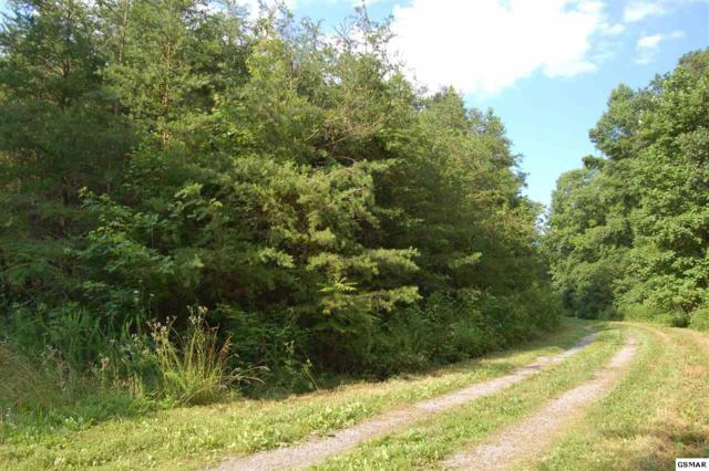 Lot 9 Bronte, Sevierville, TN  (#210292) :: Billy Houston Group