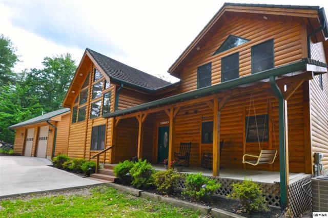 140 Kelly Ridge Rd, Townsend, TN 37882 (#210325) :: Colonial Real Estate