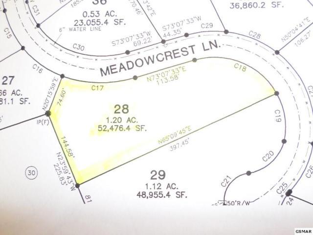 Lot 28 Meadowcrest Lane, Dandridge, TN 37725 (#210333) :: Four Seasons Realty, Inc