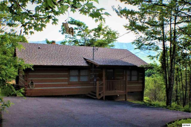 "1017 Fox Tail Trail ""Living On Love, Gatlinburg, TN 37738 (#210458) :: Colonial Real Estate"