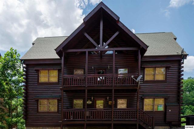 1110 Black Bear Cub Way Big Bear Cinema, Sevierville, TN 37862 (#210484) :: Colonial Real Estate